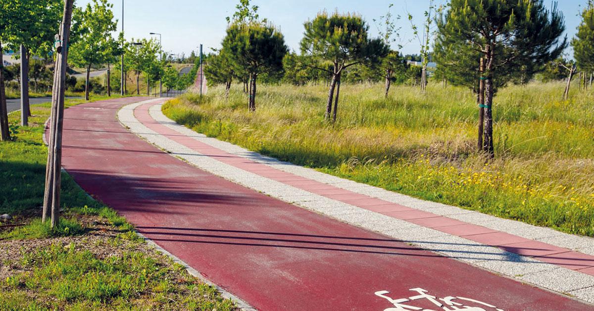 Ecovia pode ligar quatro municípios