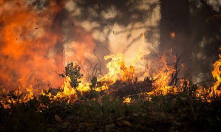 Incêndio consome mato em Covas Altas