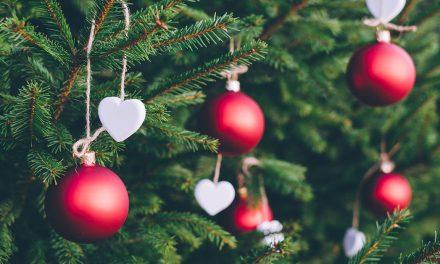 Quadra natalícia: as preferências e a tendência de poupança das famílias para este Natal