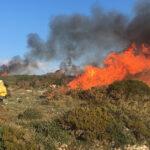 Marinha da Mendiga recebeu mais uma ação de fogo controlado