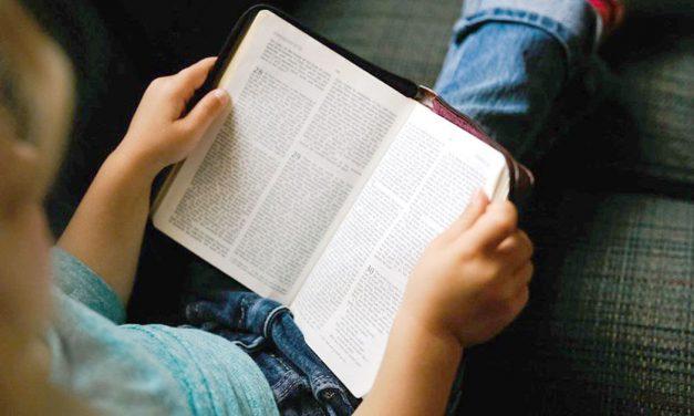 Ler: um prazer, para muitos, fundamental