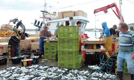 Pescadores querem maior controlo aos preços do pescado