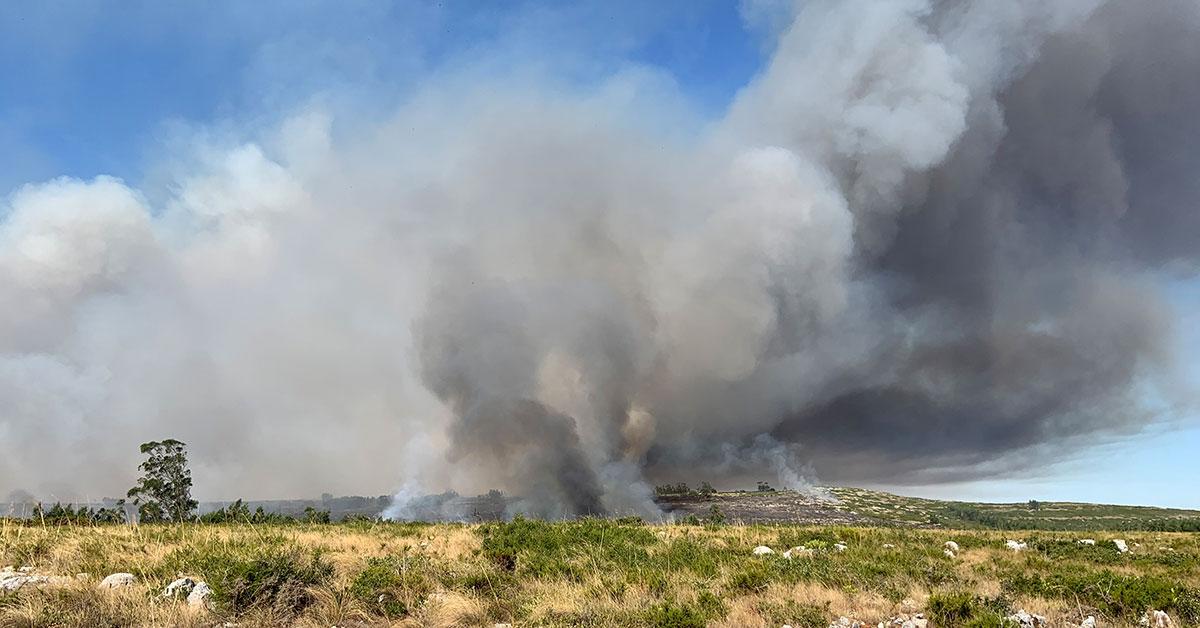 Incêndio na Marinha da Mendiga mobiliza mais de uma centena de operacionais