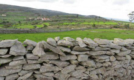 Os Muros de Pedra Seca de Porto de Mós são finalistas das 7 Maravilhas da Cultura Popular