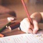 """Escolas do concelho arrecadam quatro selos com projetos no âmbito do """"Escola Amiga da Criança"""""""