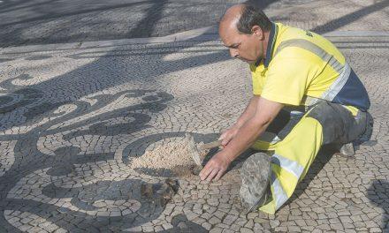 Arte da calçada candidata a Património Cultural Imaterial