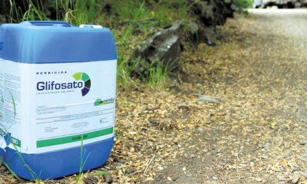 Grupo de moradores promove petição para abolir o uso de herbicidas na freguesia